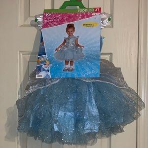 Other - Disney Princess dress